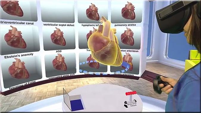 VR heart